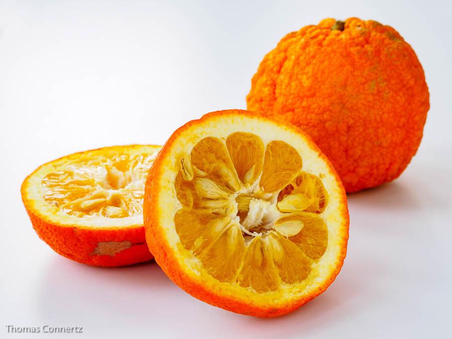 Bitterorangen Pomeranzen